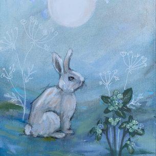 Kaninliv blå 2